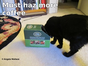 Must haz more coffee