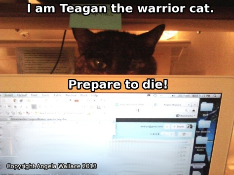 Teagan Warrior Cat