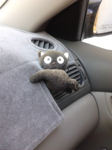 car choco cat