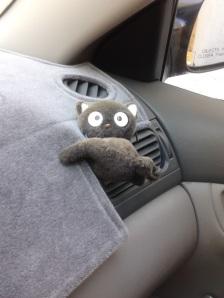car choco cat